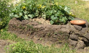 Bepflanzung der kompostierenden Grasssoden