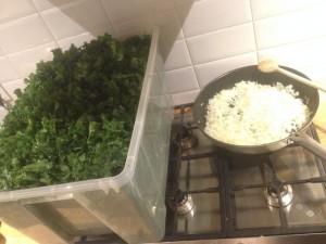 Grünkohl und Zwiebelwürfel beim Anbraten auf Gasherd